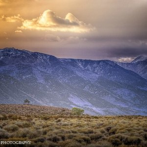 Eastern Sierra by Rob Bohning